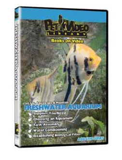 Video Pet Library Set-Up, Aquascape & Maintain Your Freshwater Aquarium