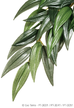 Exo-Terra Jungle Plant, small silk Ruscus